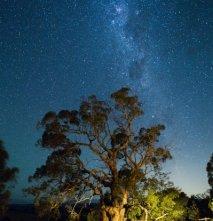 foto Si una nit un estel... (Unsplash